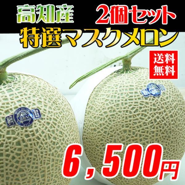 高知県産 マスクメロン2玉