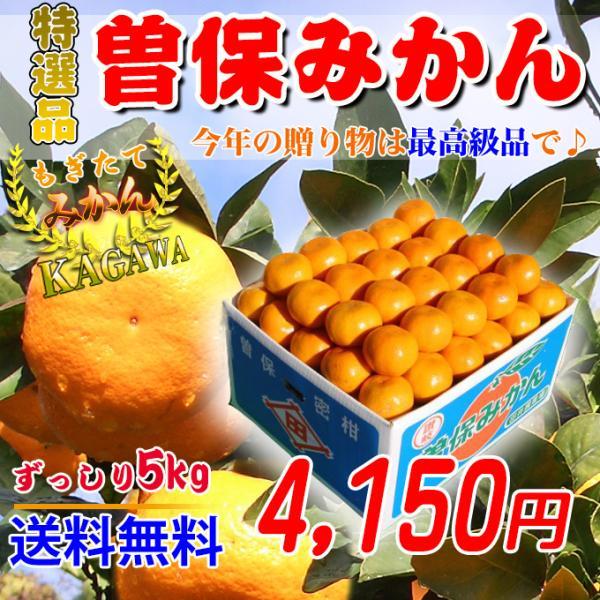 曽保みかん5kg 香川県産のお歳暮用のギフトみかんを送料無料で。