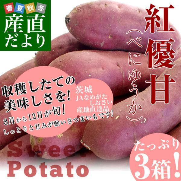 茨城県より産地直送 JAなめがたしおさい さつまいも「紅優甘 (べにゆうか)」 SからSSサイズ 1キロ×3箱セット 送料無料 さつま芋 サツマイモ