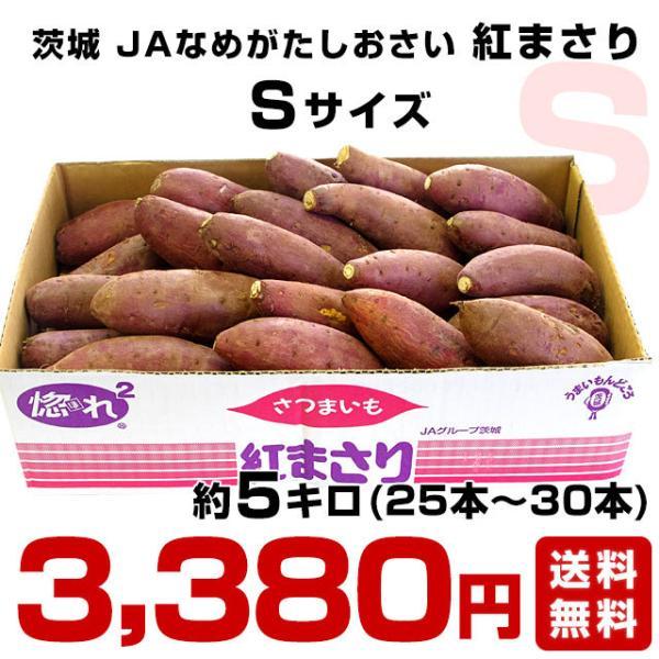 茨城県より産地直送 JAなめがた さつまいも「紅まさり(べにまさり)」 Sサイズ 約5キロ(25本から30本前後) 送料無料 さつま芋 サツマイモ 薩摩芋 sanchokudayori 02