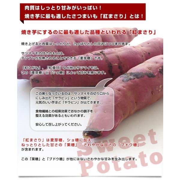 茨城県より産地直送 JAなめがた さつまいも「紅まさり(べにまさり)」 Sサイズ 約5キロ(25本から30本前後) 送料無料 さつま芋 サツマイモ 薩摩芋 sanchokudayori 04