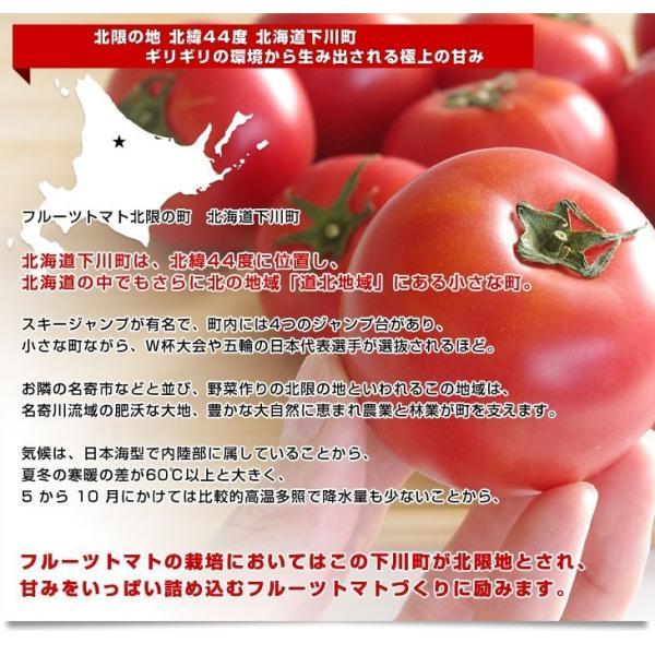 北海道より産地直送 下川町のスーパーフルーツトマト <北の極> プレミアム 約800g化粧箱 LからSサイズ(8玉から15玉)送料無料 とまと|sanchokudayori|03