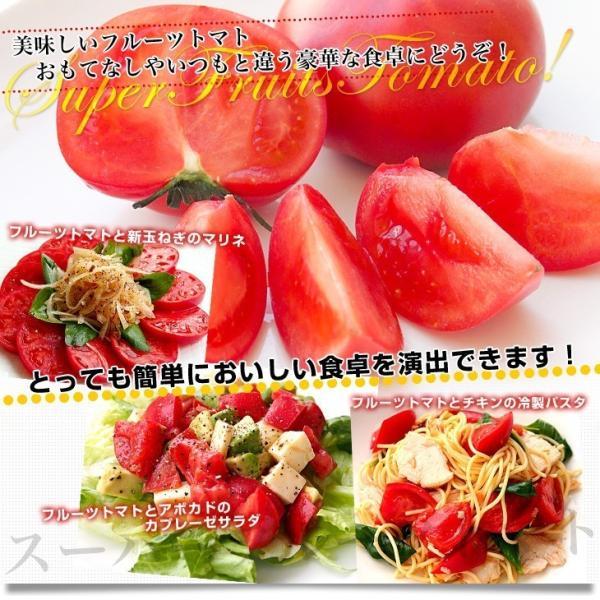 北海道より産地直送 下川町のスーパーフルーツトマト <北の極> プレミアム 約800g化粧箱 LからSサイズ(8玉から15玉)送料無料 とまと|sanchokudayori|06