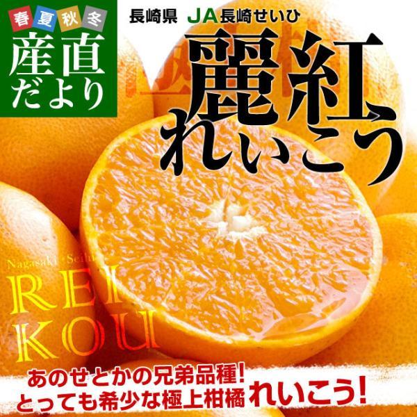 長崎県より産地直送 JA長崎せいひ 麗紅 (れいこう) 3LからLサイズ 優品以上 2.5キロ (10玉から15玉) 送料無料 柑橘 オレンジ れいこうかん sanchokudayori