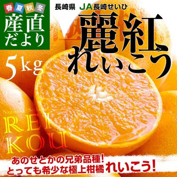 長崎県より産地直送 JA長崎せいひ 麗紅 (れいこう) 3LからLサイズ 優品以上 5キロ (20玉から30玉) 送料無料 柑橘 オレンジ れいこうかん|sanchokudayori