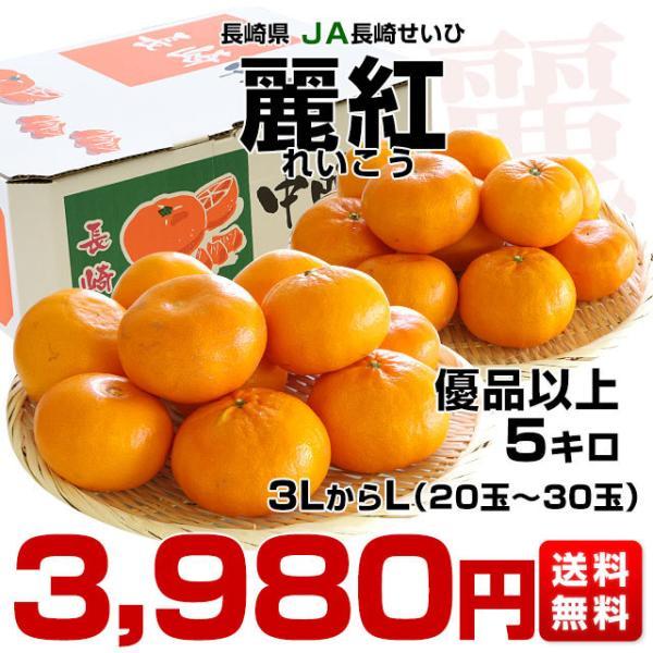 長崎県より産地直送 JA長崎せいひ 麗紅 (れいこう) 3LからLサイズ 優品以上 5キロ (20玉から30玉) 送料無料 柑橘 オレンジ れいこうかん|sanchokudayori|02