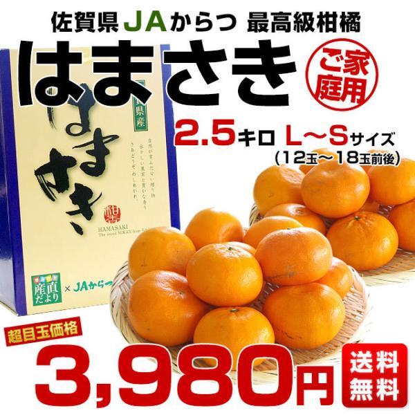 佐賀県より産地直送 JAからつ はまさき ご家庭用 ちょっと訳あり LからSサイズ 約2.5キロ (12から18玉前後)  送料無料 柑橘 オレンジ みかん sanchokudayori 02