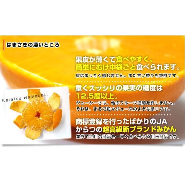 佐賀県より産地直送 JAからつ はまさき ご家庭用 ちょっと訳あり LからSサイズ 約2.5キロ (12から18玉前後)  送料無料 柑橘 オレンジ みかん sanchokudayori 05