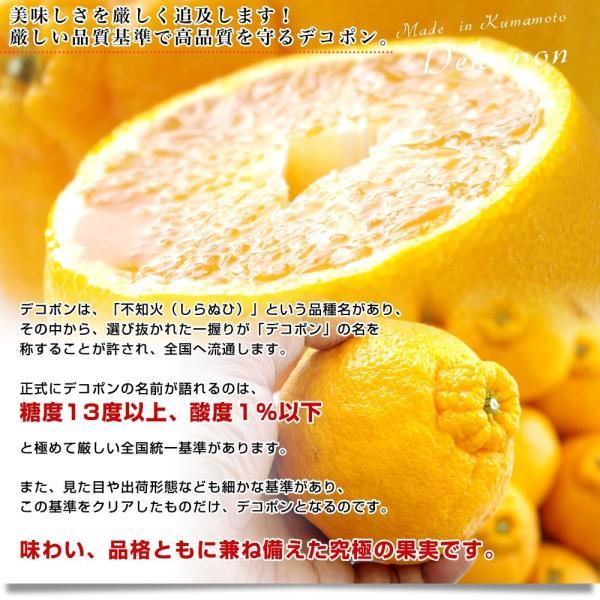 送料無料 熊本県産 JA熊本果実連 露地栽培デコポン 2LからLサイズ 3キロ (12から15玉)柑橘 オレンジ 市場スポット|sanchokudayori|04