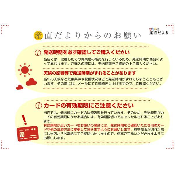 北海道産 JAきょうわ らいでんメロン 赤肉 1玉 1.3キロ めろん 夏ギフト お中元ギフト 市場スポット sanchokudayori 09