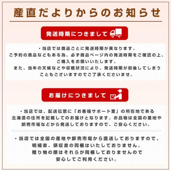 北海道産   JAきょうわ らいでんメロン 赤肉 2玉 1.3キロ×2玉 めろん 夏ギフト お中元ギフト 市場スポット|sanchokudayori|09