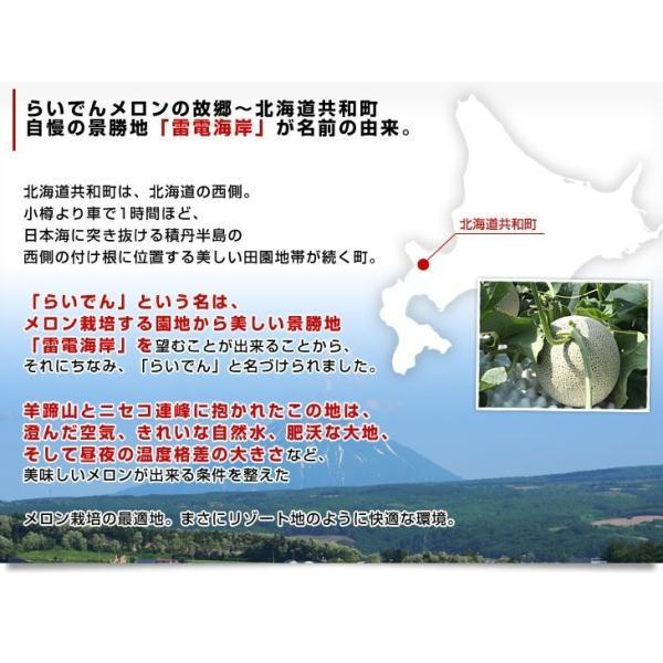 北海道産   JAきょうわ らいでんメロン 赤肉 2玉 1.3キロ×2玉 めろん 夏ギフト お中元ギフト 市場スポット|sanchokudayori|05