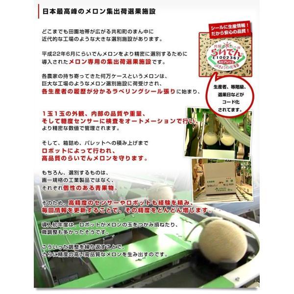 北海道産   JAきょうわ らいでんメロン 赤肉 2玉 1.3キロ×2玉 めろん 夏ギフト お中元ギフト 市場スポット|sanchokudayori|06