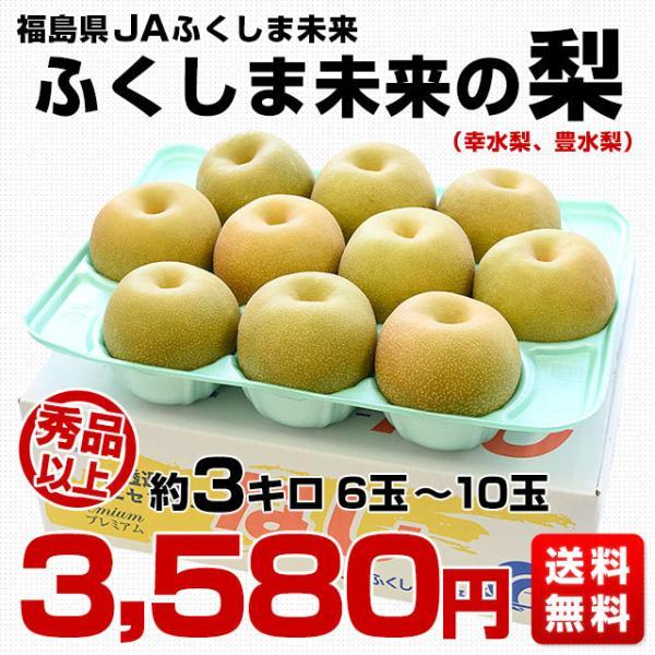 送料無料 福島県より産地直送 JAふくしま未来の梨 5キロ(10玉から16玉) なし ナシ sanchokudayori 02