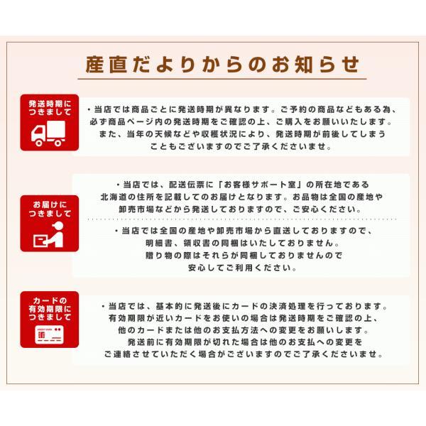 送料無料 福島県より産地直送 JAふくしま未来の梨 5キロ(10玉から16玉) なし ナシ sanchokudayori 08