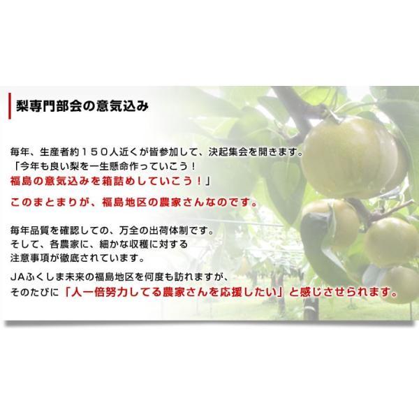 送料無料 福島県より産地直送 JAふくしま未来の梨 5キロ(10玉から16玉) なし ナシ sanchokudayori 05