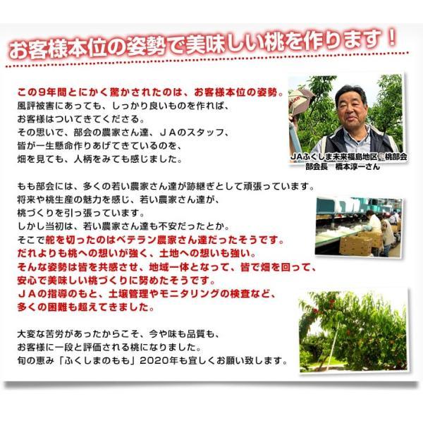 福島県より産地直送 JAふくしま未来 秀品桃 ミスピーチ(あかつき) 1.8キロ以上 (7玉から9玉入り) もも 送料無料  福島ミスピーチ|sanchokudayori|06