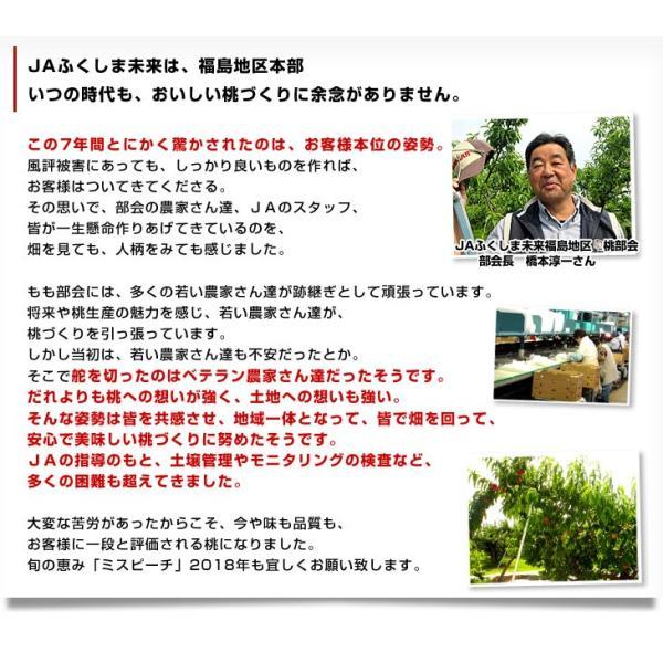 送料無料 福島県より産地直送 JAふくしま未来 秀品桃ミスピーチ (まどか、川中島白桃、ゆうぞら) 約2キロ(7から9玉) もも|sanchokudayori|09