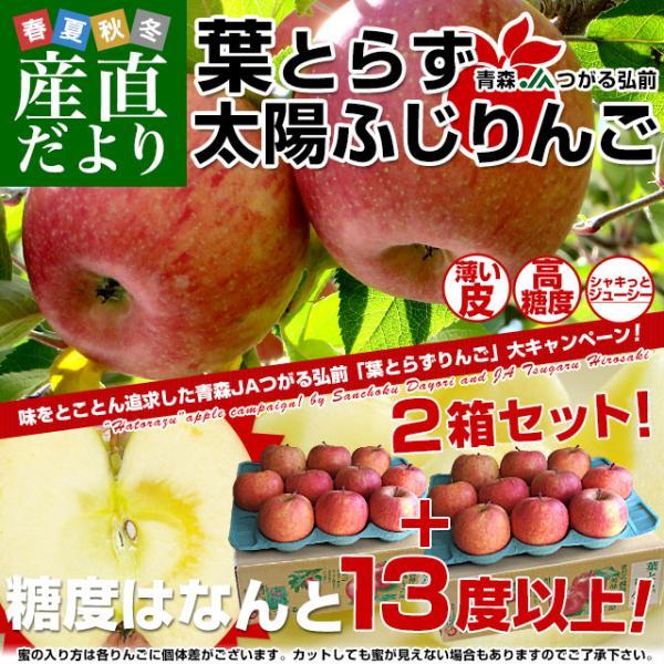 送料無料 青森県より産地直送 JAつがる弘前 葉とらず太陽ふじりんご 糖度13度以上 約3キロ×2箱(9から13玉×2箱) 林檎 りんご リンゴ|sanchokudayori