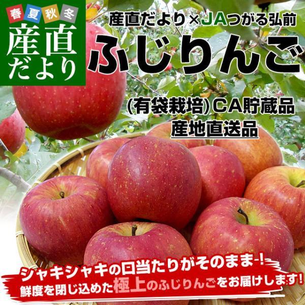 青森県より産地直送 JAつがる弘前 ふじ (有袋栽培) CA貯蔵品 約3キロ (9から13玉) 送料無料 りんご リンゴ 林檎|sanchokudayori