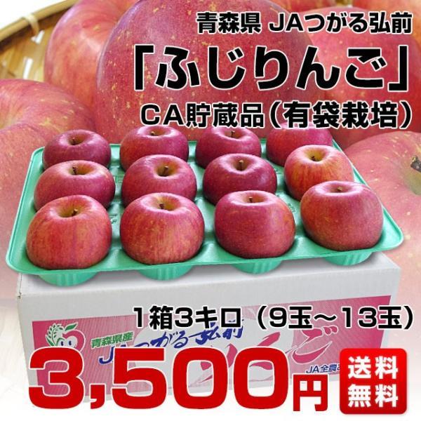 青森県より産地直送 JAつがる弘前 ふじ (有袋栽培) CA貯蔵品 約3キロ (9から13玉) 送料無料 りんご リンゴ 林檎|sanchokudayori|02