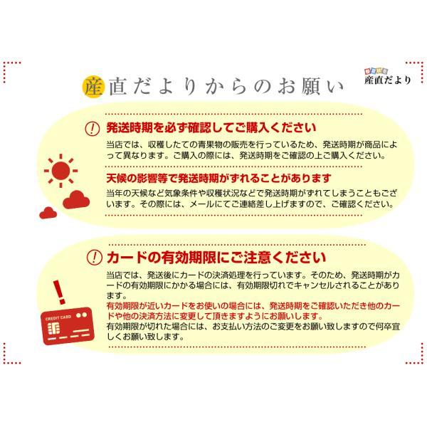 青森県より産地直送 JAつがる弘前 ふじ (有袋栽培) CA貯蔵品 約3キロ (9から13玉) 送料無料 りんご リンゴ 林檎|sanchokudayori|08