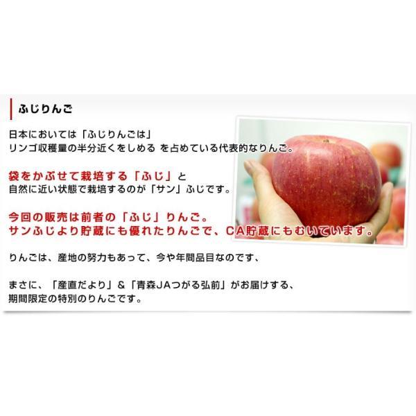 青森県より産地直送 JAつがる弘前 ふじ (有袋栽培) CA貯蔵品 約3キロ (9から13玉) 送料無料 りんご リンゴ 林檎|sanchokudayori|04