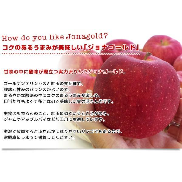 青森県より産地直送 JAつがる弘前 ジョナゴールド CA貯蔵品 約3キロ(9玉から13玉)送料無料 りんご じょなごーるど |sanchokudayori|05
