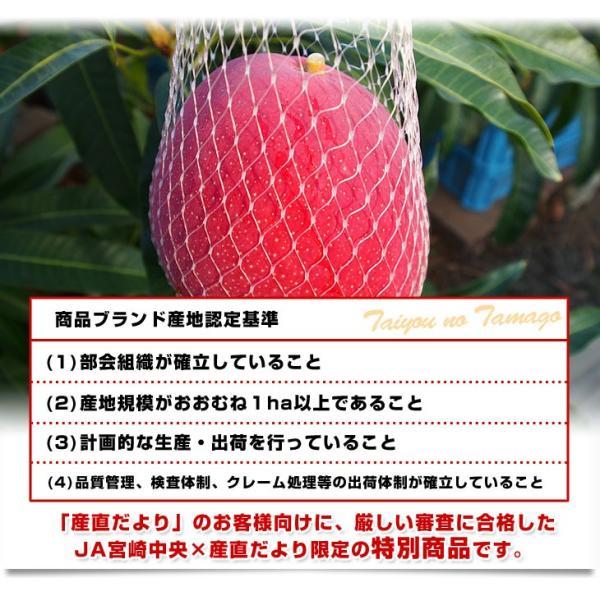 宮崎県より産地直送 JA宮崎中央 完熟マンゴー 太陽のタマゴ2L×2玉 (350gから459g×2玉) 送料無料 宮崎マンゴー 太陽のたまご 5月中旬以降発送 sanchokudayori 05