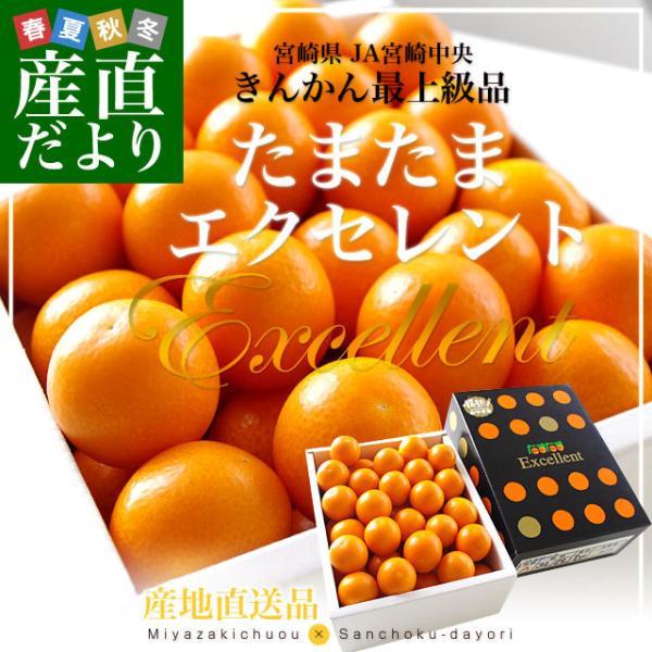 宮崎県から産地直送 JA宮崎中央 たまたまエクセレント 2Lサイズ 1キロ(約40粒)きんかん 金柑|sanchokudayori