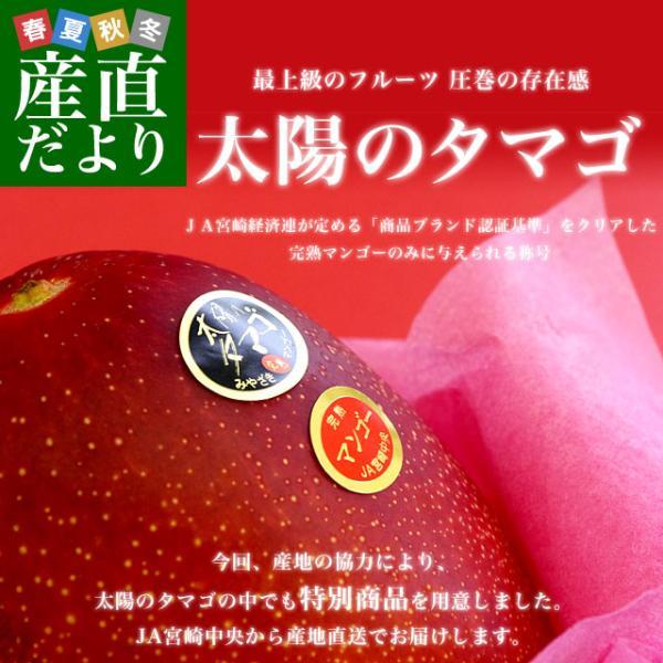 送料無料 宮崎県より産地直送 JA宮崎中央 太陽のタマゴ 最高級AA品 5Lサイズ 650g以上×1玉 マンゴー sanchokudayori