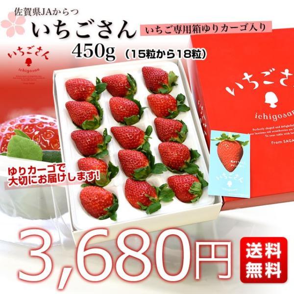佐賀県より産地直送 JAからつ 新品種いちご いちごさん 苺専用箱ゆりカーゴ入り 450g (15粒から18粒) 送料無料 イチゴ イチゴさん うまかもん sanchokudayori 02