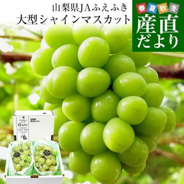 山梨県より産地直送 JAふえふき 大型シャインマスカット 2キロ(3から4房) ぶどう 葡萄 ブドウ|sanchokudayori