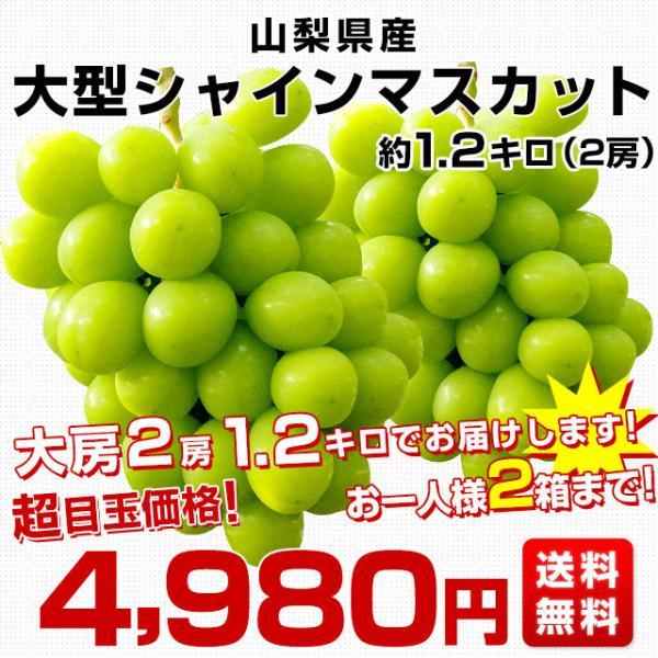 山梨県より産地直送 JAふえふき 大型シャインマスカット 2キロ(3から4房) ぶどう 葡萄 ブドウ|sanchokudayori|02