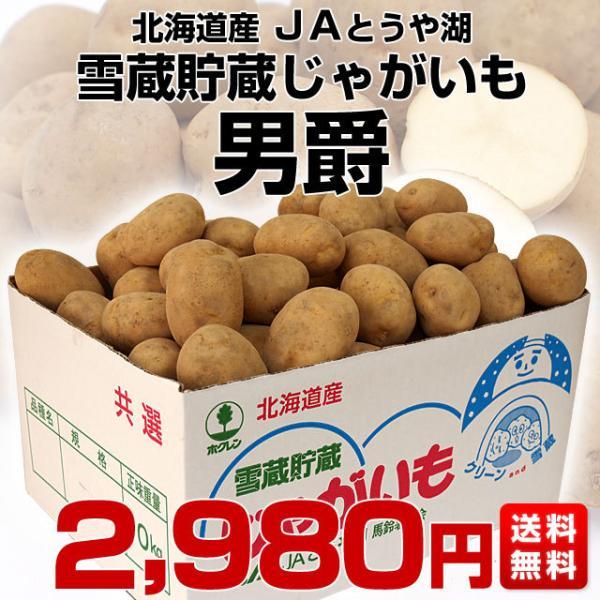 送料無料 北海道より産地直送 JAとうや湖 雪蔵貯蔵じゃがいも (男爵) Mサイズ 10キロ 芋 馬鈴薯|sanchokudayori|02