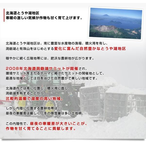北海道より産地直送 JAとうや湖 雪蔵貯蔵じゃがいも (男爵) Lサイズ 10キロ  送料無料 芋 ジャガイモ 馬鈴薯|sanchokudayori|06