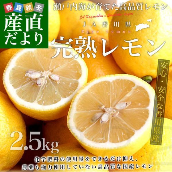 香川県から産地直送 JA香川県 完熟レモン 約 2.5キロ (20玉から25玉前後) 送料無料  柑橘 檸檬 国産レモン sanchokudayori