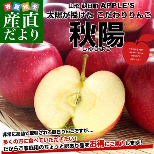 山形県より産地直送 山形朝日町APPLE'S 秋陽りんご 約9〜10キロ 林檎 リンゴ 送料無料