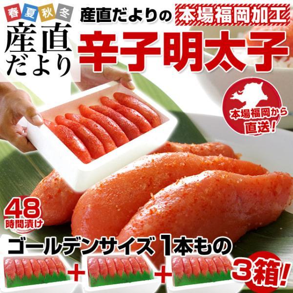 送料無料 福岡加工 辛子明太子 ゴールデンサイズ 1本もの 約280g(6から7本)×3箱|sanchokudayori