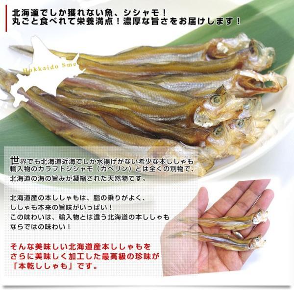 北海道から直送 北海道産 高級珍味 本乾ししゃも 4袋セット (25g×4P) 送料無料 柳葉魚 シシャモ|sanchokudayori|03