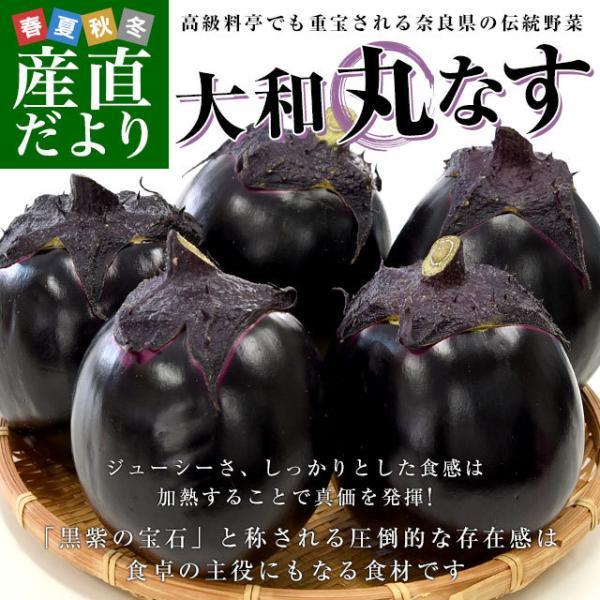 奈良県産 JAならけん 大和丸なす 秀品9から11玉 送料無料 まるなす 茄子 ナス 市場発送