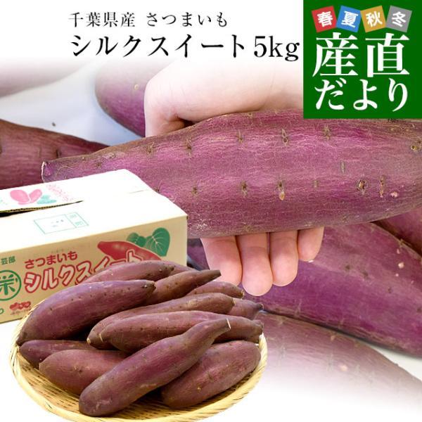 千葉県産 JAかとり シルクスイート Lサイズ5キロ 13本前後 送料無料  さつまいも サツマイモ 薩摩芋 新芋 市場発送