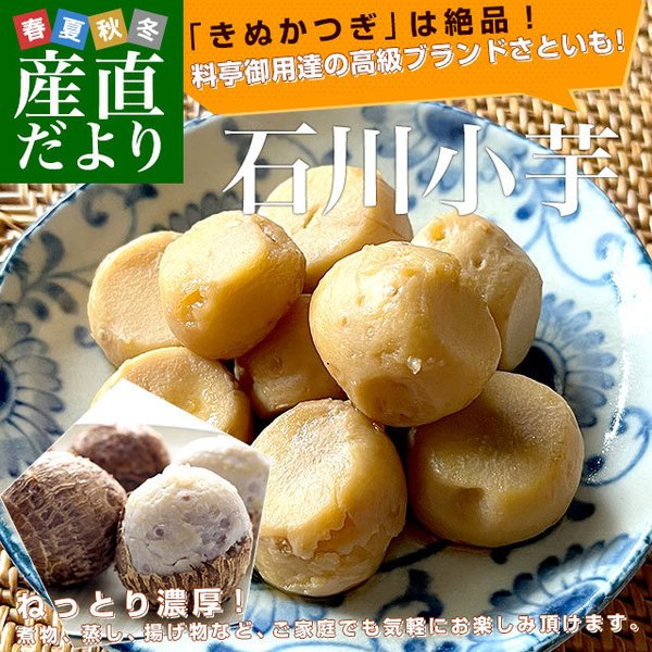 静岡県産 JA遠州夢咲 石川小芋 LからM 約2キロ(100個前後) 送料無料 いしかわこいも 石川早生 里芋 さといも サトイモ 野菜 市場発送