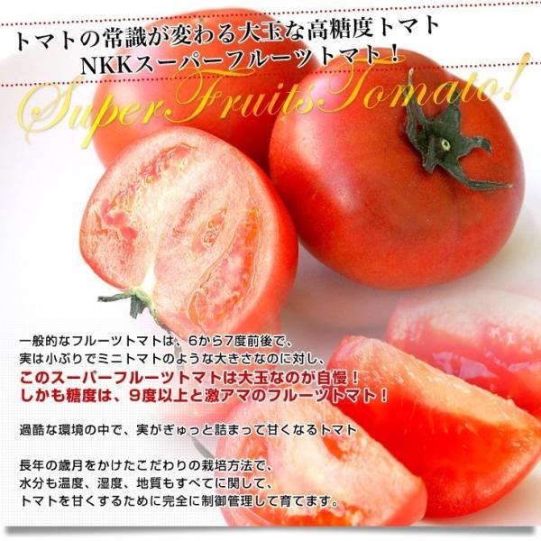 茨城県より産地直送 NKKアグリドリーム スーパーフルーツトマト 9度+ A品 約3キロ(20玉から35玉)  送料無料 高糖度トマト NKKトマト|sanchokudayori|03