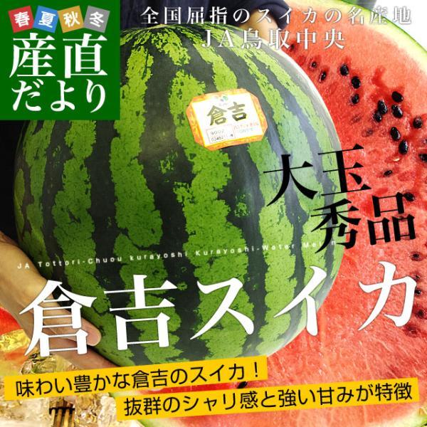 鳥取県から産地発送 JA鳥取中央 倉吉スイカ 秀品 大玉 3Lから4L  8キロ以上1玉 すいか 西瓜 送料無料 sanchokudayori