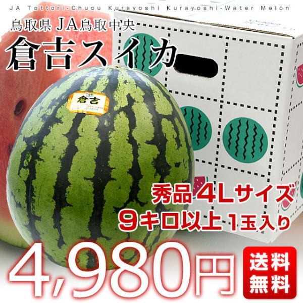 鳥取県から産地発送 JA鳥取中央 倉吉スイカ 秀品 大玉 3Lから4L  8キロ以上1玉 すいか 西瓜 送料無料 sanchokudayori 02