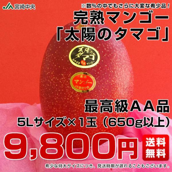 宮崎県より産地直送 JA宮崎中央 太陽のタマゴ 最高級AA品 5Lサイズ (650g以上×1玉) 送料無料 マンゴー たいようのたまご|sanchokudayoriplus|02