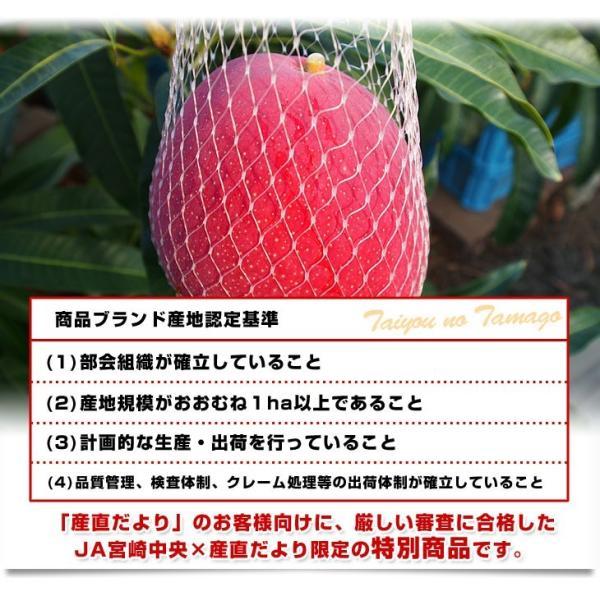 宮崎県より産地直送 JA宮崎中央 太陽のタマゴ 最高級AA品 5Lサイズ (650g以上×1玉) 送料無料 マンゴー たいようのたまご|sanchokudayoriplus|06