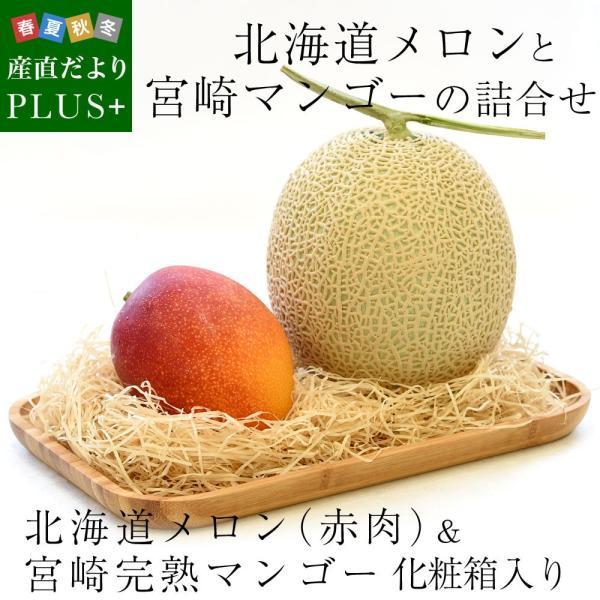 北海道メロンと宮崎マンゴー 詰合せフルーツセット 化粧箱入り めろん まんごー 送料無料 お中元ギフト|sanchokudayoriplus