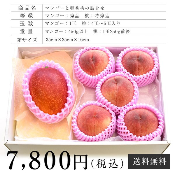 宮崎マンゴーと特秀桃 詰合せフルーツセット 化粧箱入り まんごー もも 送料無料 お中元ギフト|sanchokudayoriplus|05
